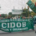 http://www.cidob-bo.org/